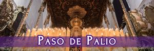 banner_300x100_palio